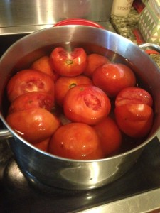 tomatoes in the pot